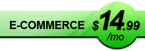 E-Commerce $19.99/mo